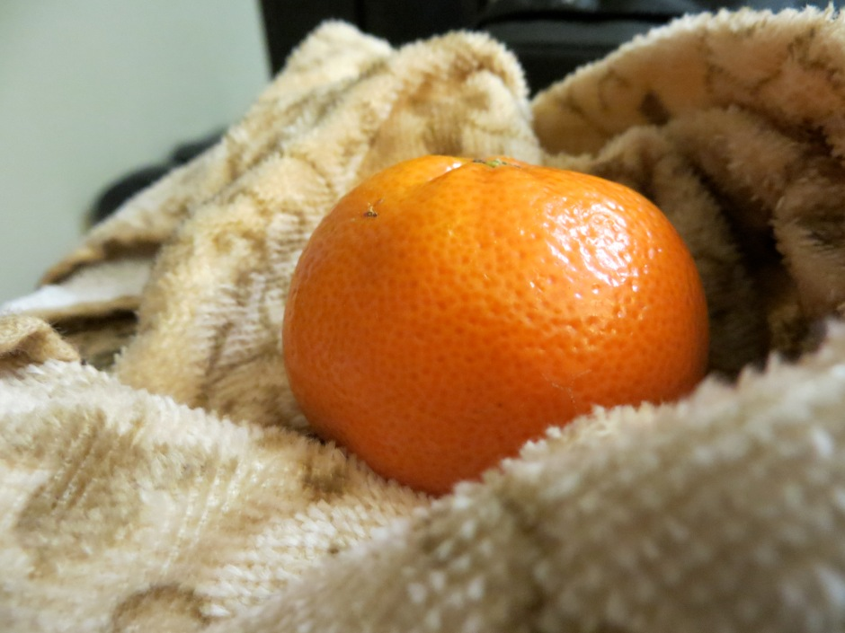 Ode to Clementine Wrapped In A Dishtowl